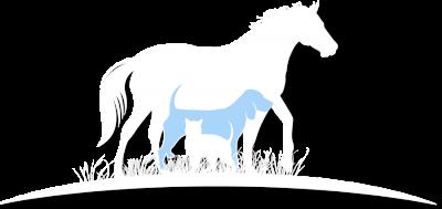 Minds Alike Equine